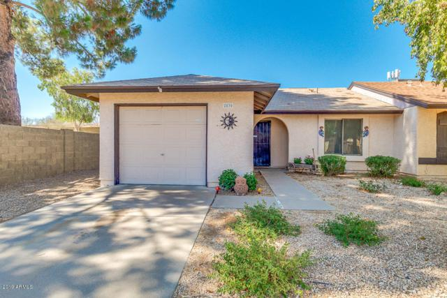 2830 E Isabella Avenue, Mesa, AZ 85204 (MLS #5950233) :: Openshaw Real Estate Group in partnership with The Jesse Herfel Real Estate Group