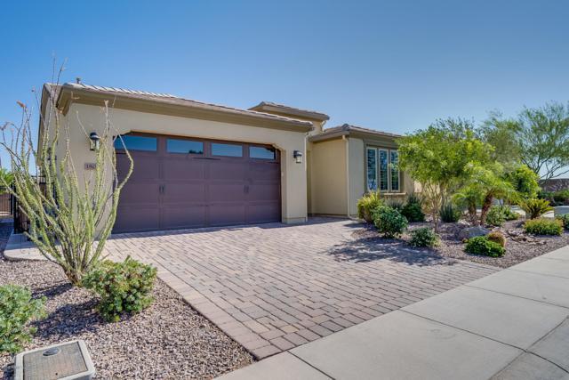 1804 E Sattoo Way, San Tan Valley, AZ 85140 (MLS #5950243) :: Conway Real Estate