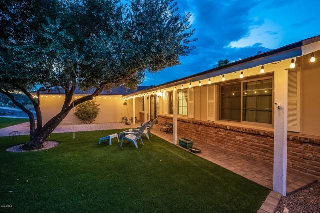 1602 W Windrose Drive, Phoenix, AZ 85029 (MLS #5950266) :: Brett Tanner Home Selling Team