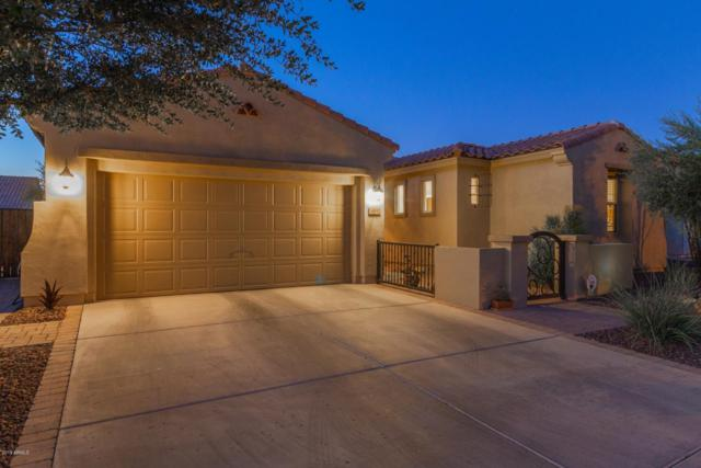 14842 W Luna Drive S, Litchfield Park, AZ 85340 (MLS #5950289) :: The Carin Nguyen Team