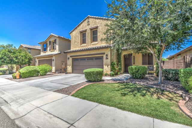 5540 W Buckskin Trail, Phoenix, AZ 85083 (MLS #5950331) :: The Laughton Team