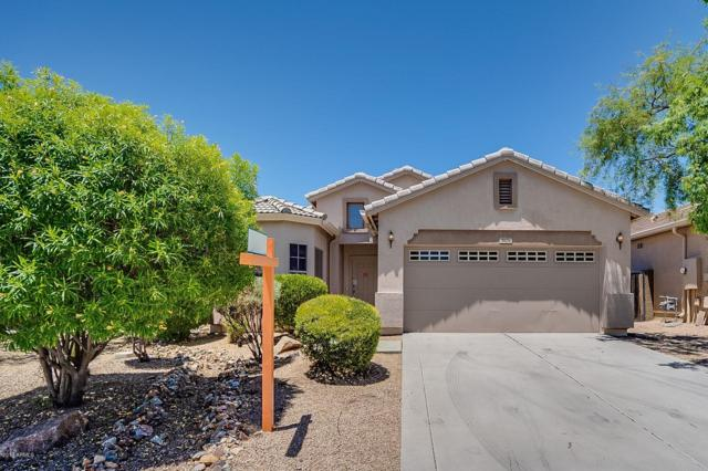 4626 W Fortune Drive, Anthem, AZ 85086 (MLS #5950344) :: Team Wilson Real Estate