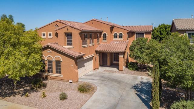 16311 N 151ST Avenue, Surprise, AZ 85374 (MLS #5950383) :: The Laughton Team