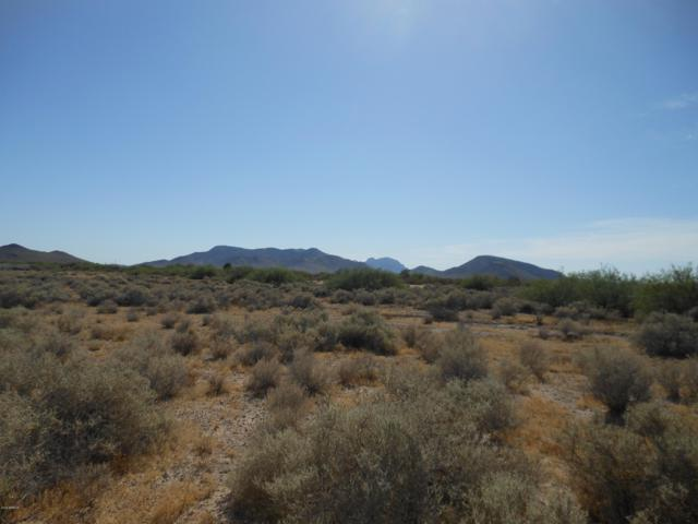 38500 W Sherman Street, Tonopah, AZ 85354 (MLS #5950387) :: The Property Partners at eXp Realty