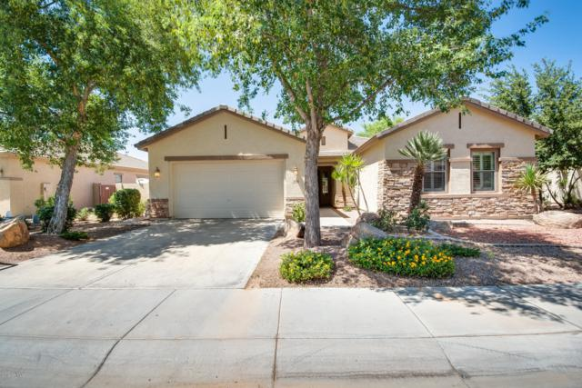 3898 E Gemini Place, Chandler, AZ 85249 (MLS #5950401) :: The Daniel Montez Real Estate Group