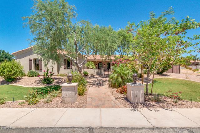 2558 E Locust Drive, Chandler, AZ 85286 (MLS #5950404) :: Revelation Real Estate