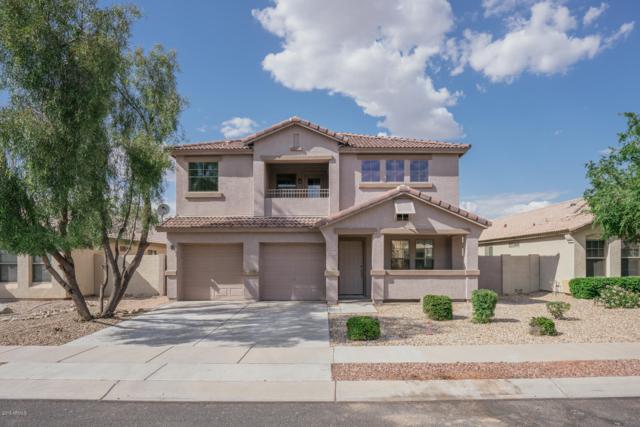 10522 W Edgemont Drive, Avondale, AZ 85392 (MLS #5950408) :: CC & Co. Real Estate Team