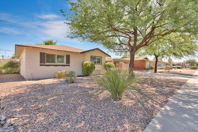 8237 E Weldon Avenue, Scottsdale, AZ 85251 (MLS #5950414) :: The Kenny Klaus Team