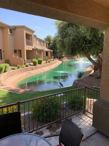 705 W Queen Creek Road #1149, Chandler, AZ 85248 (MLS #5950453) :: The Kenny Klaus Team