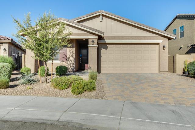 26223 N 121ST Avenue, Peoria, AZ 85383 (MLS #5950460) :: CC & Co. Real Estate Team