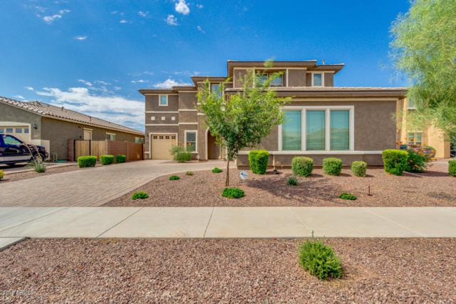 20252 E Quintero Road, Queen Creek, AZ 85142 (MLS #5950516) :: Team Wilson Real Estate