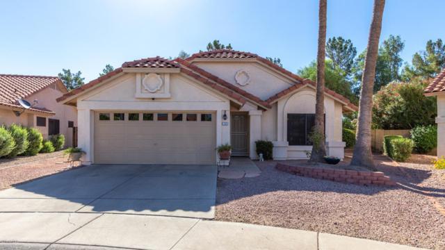 19001 N 67TH Drive, Glendale, AZ 85308 (MLS #5950541) :: The Ford Team