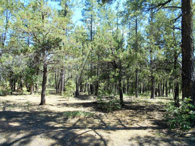 TBD Pioneer Lane, Lakeside, AZ 85929 (MLS #5950548) :: Riddle Realty