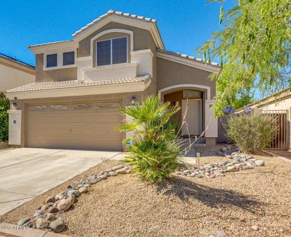 13606 W Desert Flower Drive, Goodyear, AZ 85395 (MLS #5950567) :: The Garcia Group