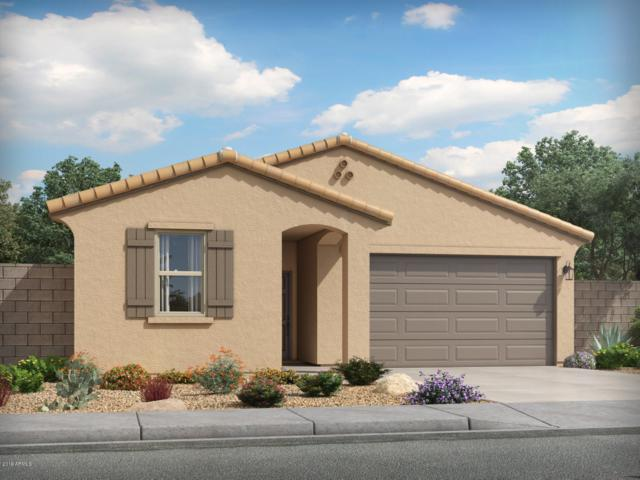4268 W Coneflower Lane, San Tan Valley, AZ 85142 (MLS #5950601) :: The Laughton Team