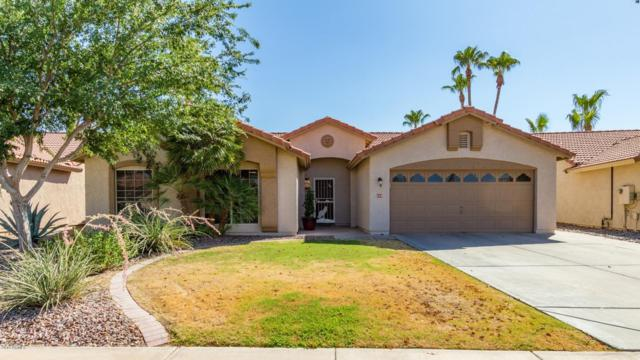 630 S Monterey Street, Gilbert, AZ 85233 (MLS #5950603) :: Openshaw Real Estate Group in partnership with The Jesse Herfel Real Estate Group