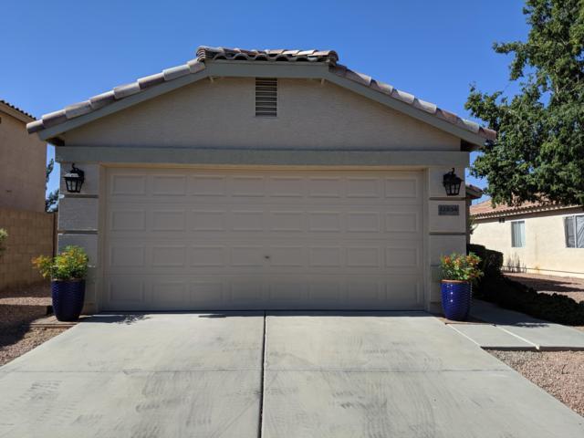 12854 W Laurel Lane, El Mirage, AZ 85335 (MLS #5950612) :: Brett Tanner Home Selling Team