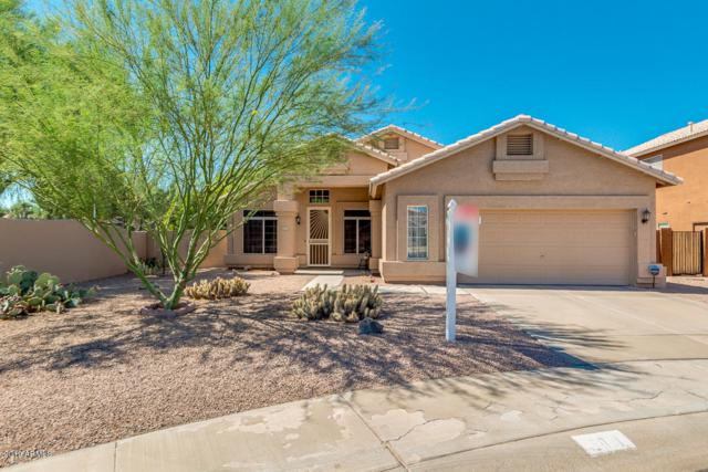 5011 W Ivanhoe Street, Chandler, AZ 85226 (MLS #5950649) :: CC & Co. Real Estate Team