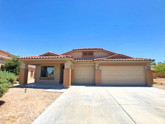 3780 N 296TH Drive, Buckeye, AZ 85396 (MLS #5950650) :: The Property Partners at eXp Realty