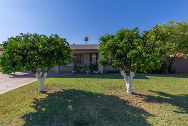 3440 E Laurel Lane, Phoenix, AZ 85028 (MLS #5950652) :: The Laughton Team