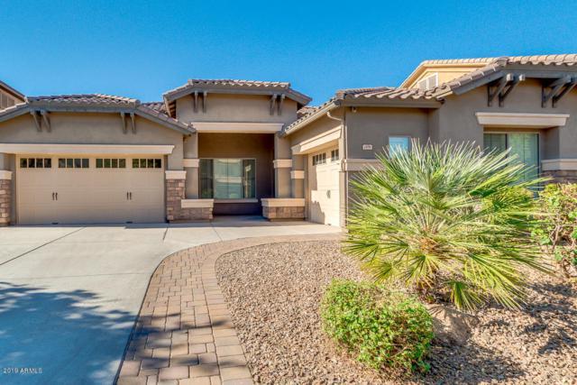 2496 E Ficus Way, Gilbert, AZ 85298 (MLS #5950693) :: Revelation Real Estate