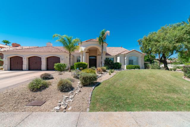 11301 E Appaloosa Place, Scottsdale, AZ 85259 (MLS #5950701) :: The Pete Dijkstra Team