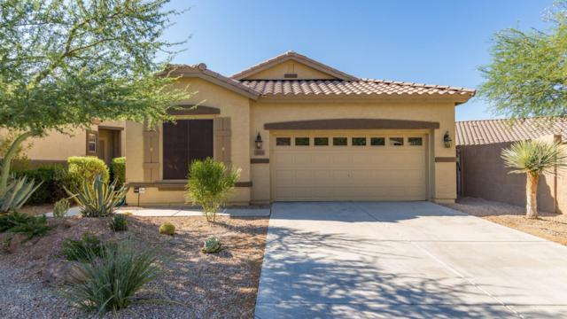 3025 W Silver Fox Way, Phoenix, AZ 85045 (MLS #5950702) :: Revelation Real Estate