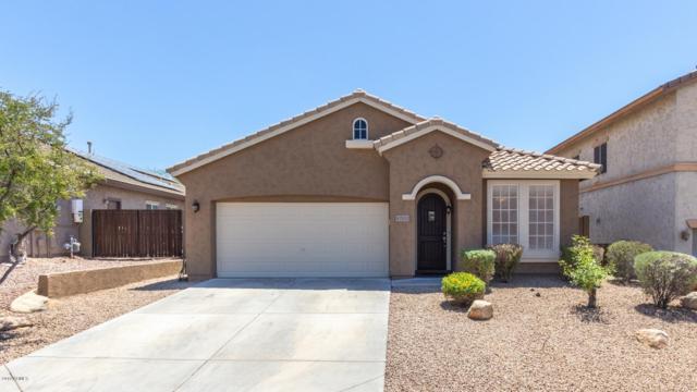 42929 N Raleigh Court, Anthem, AZ 85086 (MLS #5950710) :: Revelation Real Estate