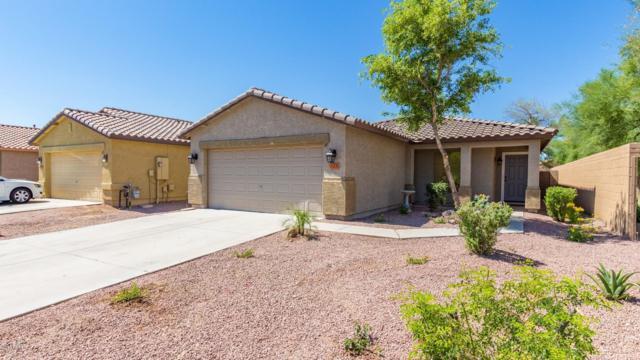 325 W Angus Road, San Tan Valley, AZ 85143 (MLS #5950748) :: The Pete Dijkstra Team