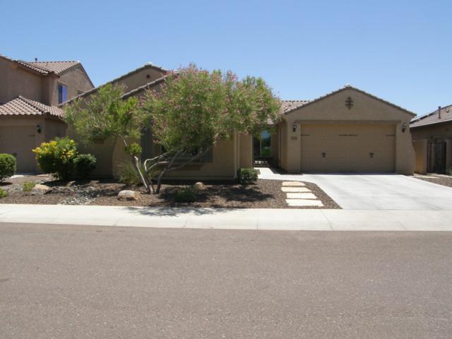 10793 W Whitehorn Way, Peoria, AZ 85383 (MLS #5950749) :: CC & Co. Real Estate Team