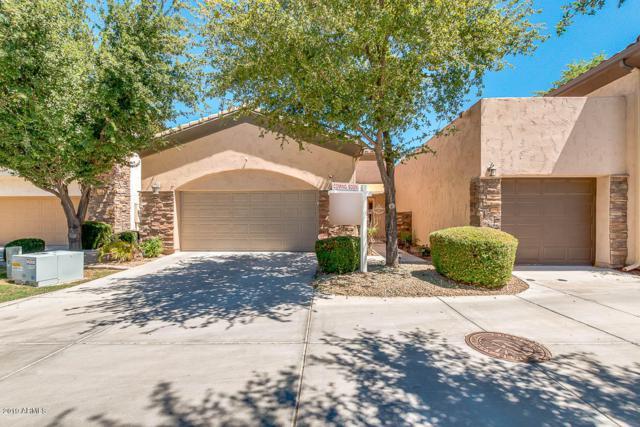 150 N Lakeview Boulevard #2, Chandler, AZ 85225 (MLS #5950778) :: Keller Williams Realty Phoenix