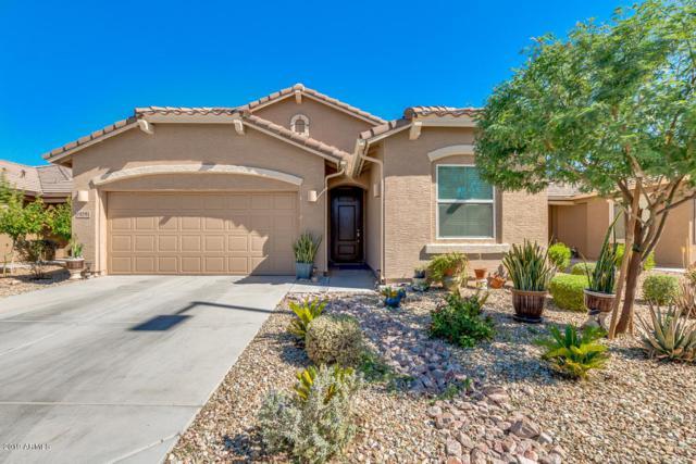 19591 W Solano Drive, Buckeye, AZ 85326 (MLS #5950802) :: The Property Partners at eXp Realty