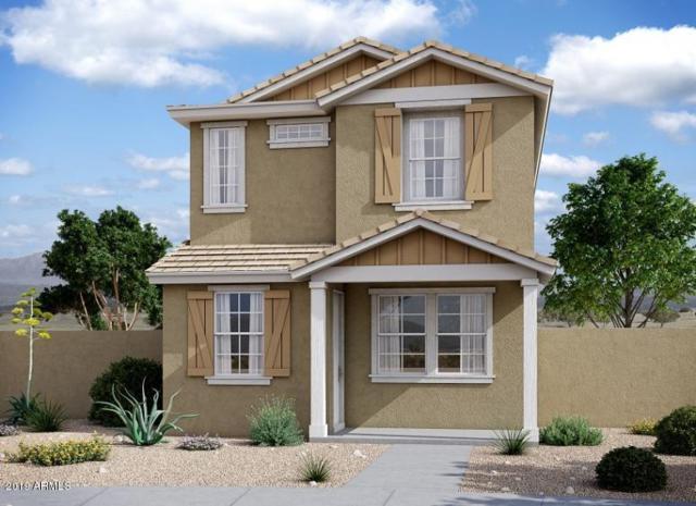 4522 S Montana Drive, Chandler, AZ 85248 (MLS #5950814) :: CC & Co. Real Estate Team