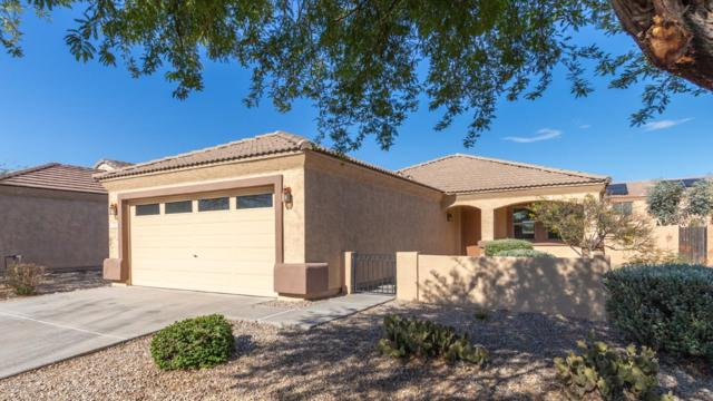 1555 S 220TH Lane, Buckeye, AZ 85326 (MLS #5950824) :: The Property Partners at eXp Realty