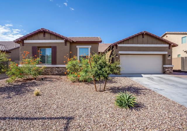 18607 W Beryl Avenue, Waddell, AZ 85355 (MLS #5950829) :: The Laughton Team