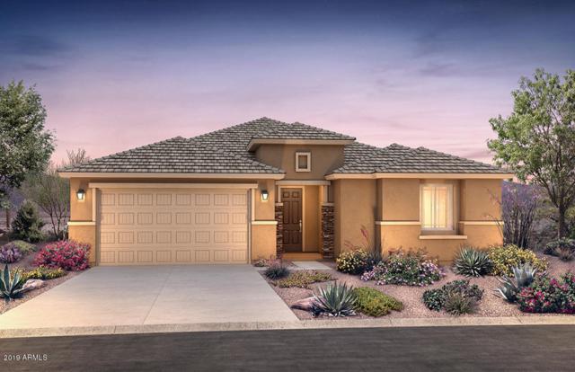19829 W Buchanan Street, Buckeye, AZ 85326 (MLS #5950834) :: The Property Partners at eXp Realty