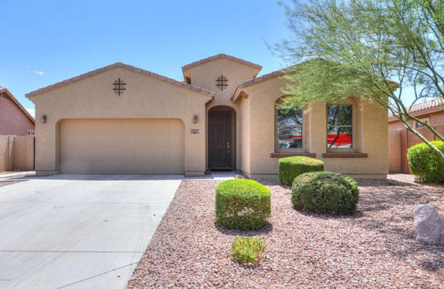 2517 E Dulcinea Trail, Casa Grande, AZ 85194 (MLS #5950842) :: Revelation Real Estate