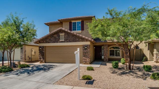 2756 W Sunland Avenue, Phoenix, AZ 85041 (MLS #5950844) :: CC & Co. Real Estate Team