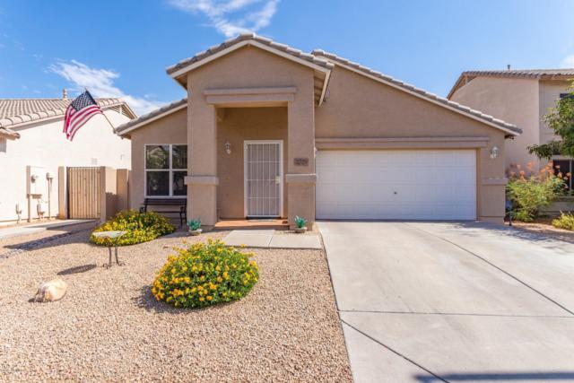 2729 E Catalina Avenue, Mesa, AZ 85204 (MLS #5950871) :: CC & Co. Real Estate Team