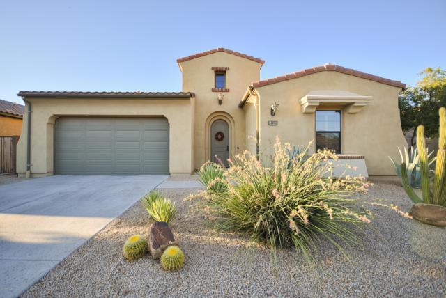 14416 W Desert Flower Drive, Goodyear, AZ 85395 (MLS #5950890) :: The Pete Dijkstra Team