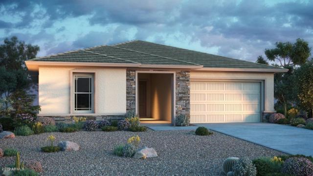 20984 E Raven Drive, Queen Creek, AZ 85142 (MLS #5950894) :: Revelation Real Estate