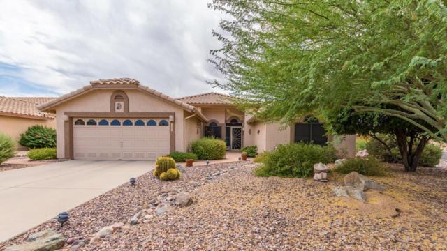7901 E Salt Bush Road, Gold Canyon, AZ 85118 (MLS #5950906) :: Occasio Realty