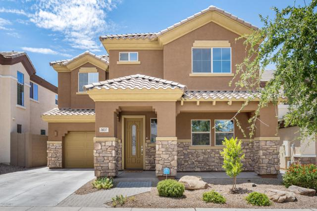 3837 E Branham Lane, Phoenix, AZ 85042 (MLS #5950944) :: CC & Co. Real Estate Team