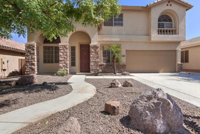 2204 W Bonanza Lane, Phoenix, AZ 85085 (MLS #5950946) :: Occasio Realty