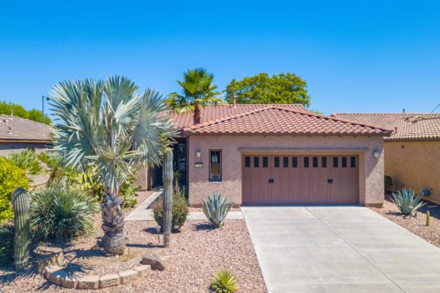 12368 W Hedge Hog Place, Peoria, AZ 85383 (MLS #5950968) :: CANAM Realty Group