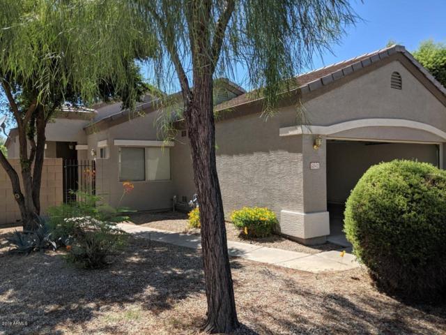 6842 S 32ND Place, Phoenix, AZ 85042 (MLS #5950990) :: CC & Co. Real Estate Team