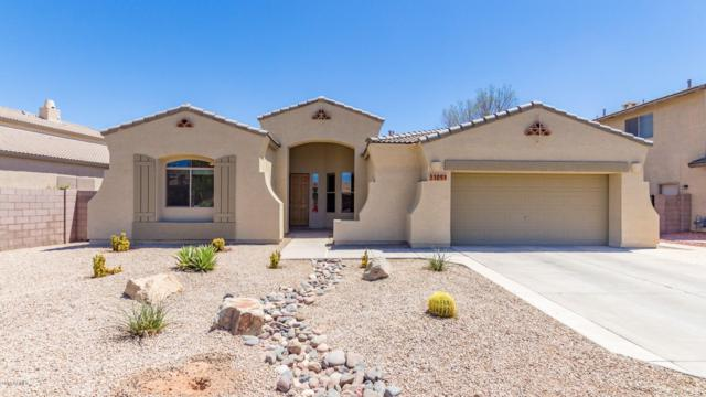 3109 E Runaway Bay Place, Chandler, AZ 85249 (MLS #5951013) :: The Laughton Team