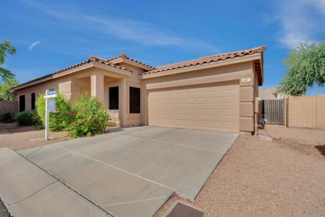 431 W Aloe Place, Chandler, AZ 85248 (MLS #5951050) :: Revelation Real Estate