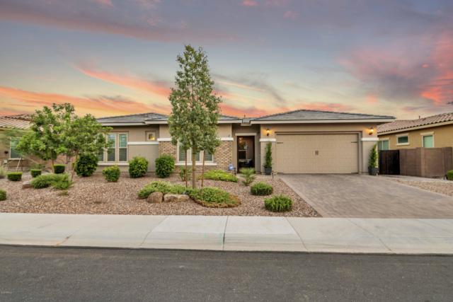 2257 E Saddlebrook Road, Gilbert, AZ 85298 (MLS #5951064) :: CC & Co. Real Estate Team