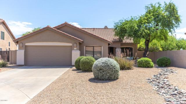 4317 E Williams Drive, Phoenix, AZ 85050 (MLS #5951075) :: Keller Williams Realty Phoenix